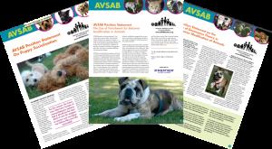 Marketing for Dog Professionals